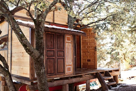 Fantastic treehut betwen old oaks  - Boomhut