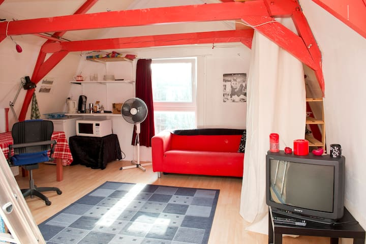 Nice family attic-room near Centre - Ámsterdam - Loft