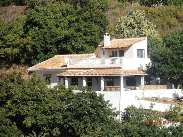 STUDY IN TROPICAL BED - Motril - Hus