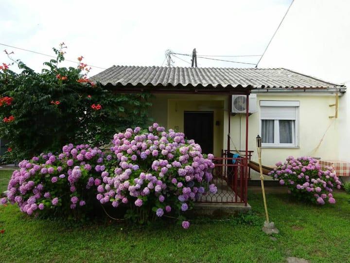 House near beach, kite clubs and Ada - Bojana