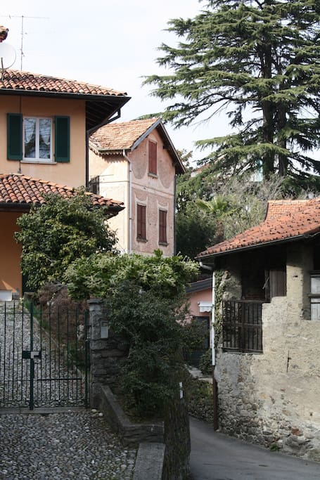The neighbouring houses