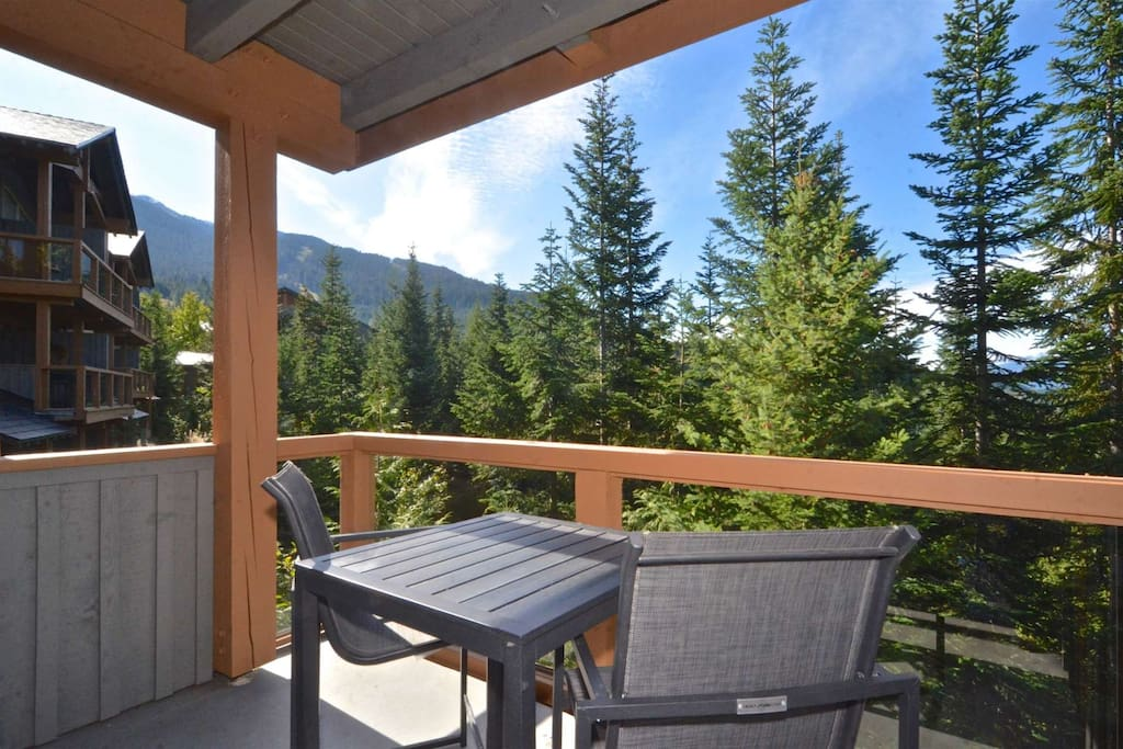 High up on Whistler mountain, stunning views. Deck off kitchen with BBQ
