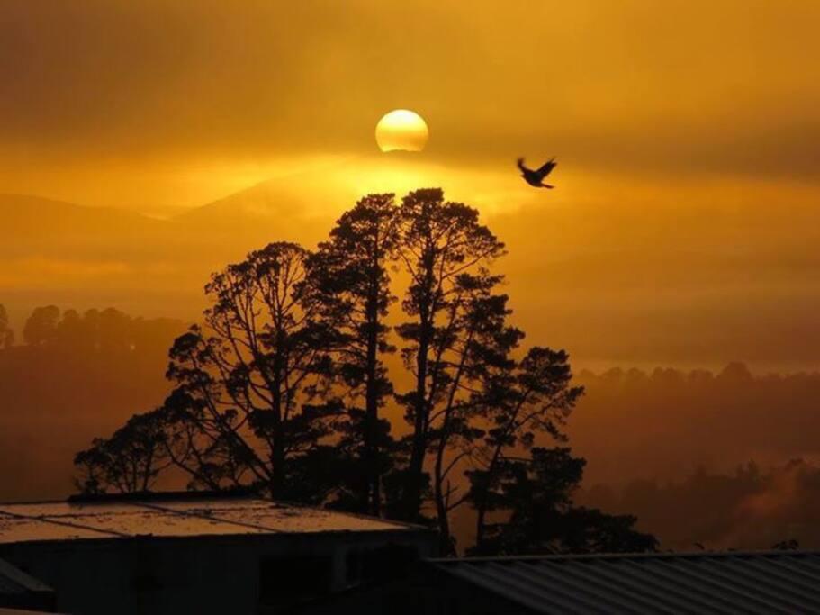 Magic sunrise on a fresh autumn morning on the cherry/fig farm