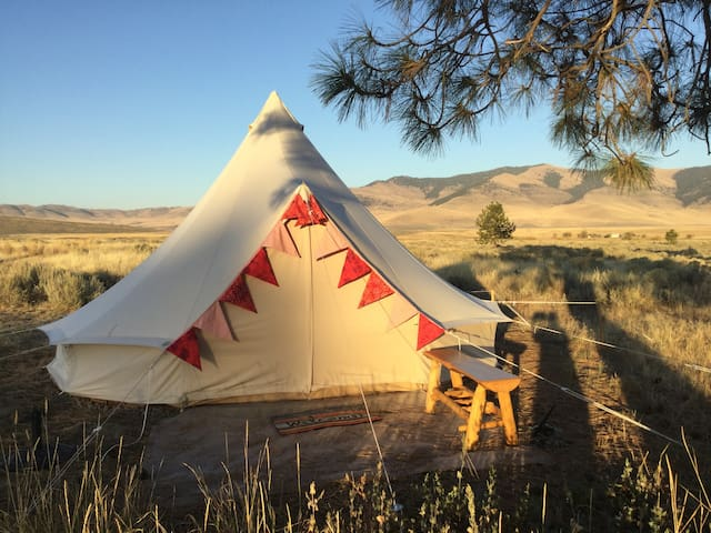 Sage Oasis/Roomy Red Comfort Camp