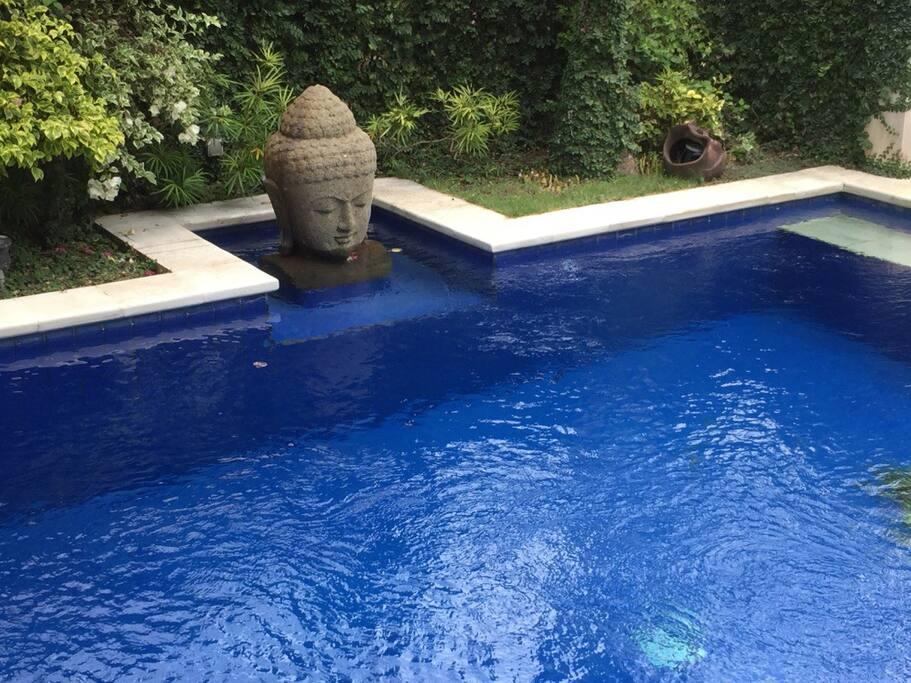 Crystal clean pool