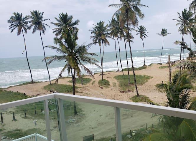Praia Blz Mar Ondas Coqueirais