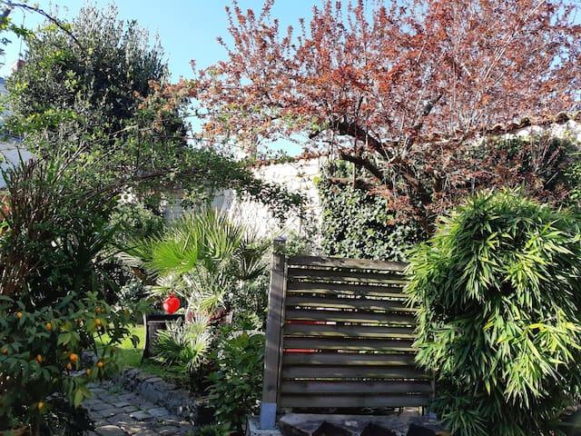 Studio ensoleillé avec cour et vue sur jardin