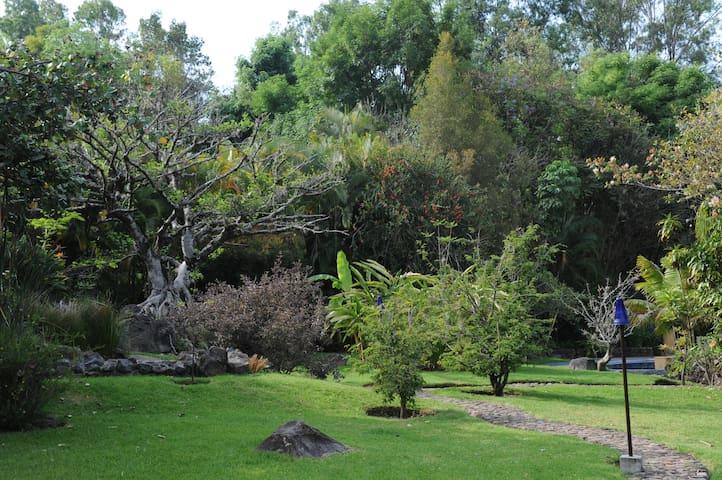 Jardín - Casa Raíz