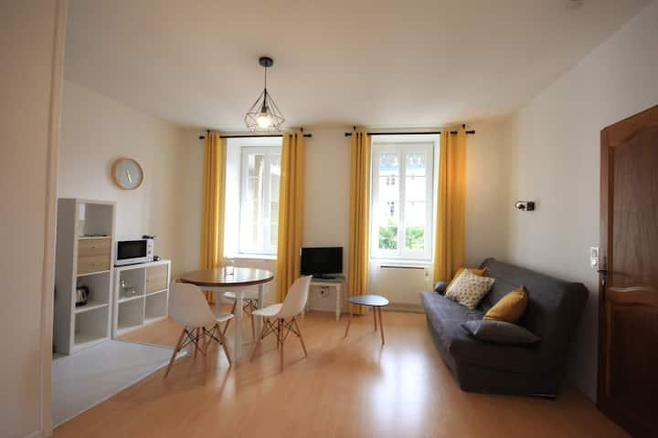 Grand studio cosy avec balcon