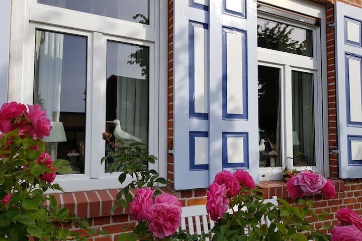 Rosengarten vorm Haus