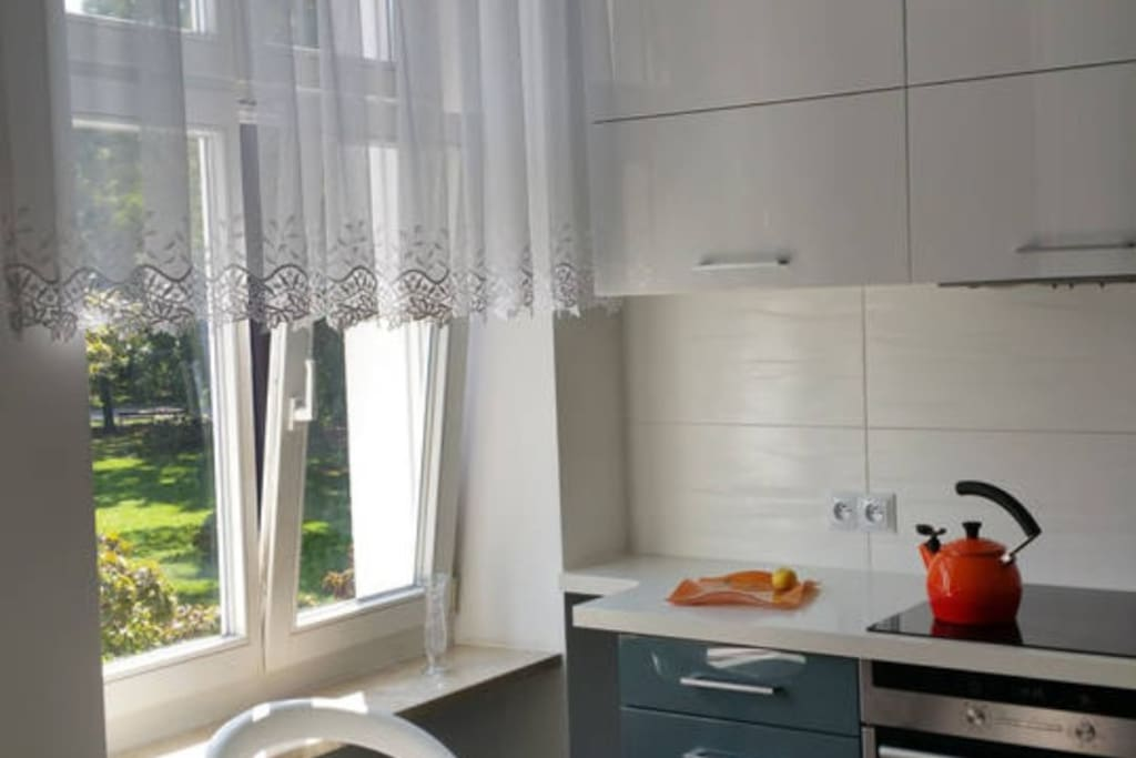 Modern fully equipped kitchen with park view