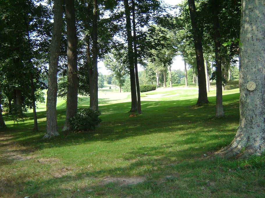 Back Yard / Golf Course