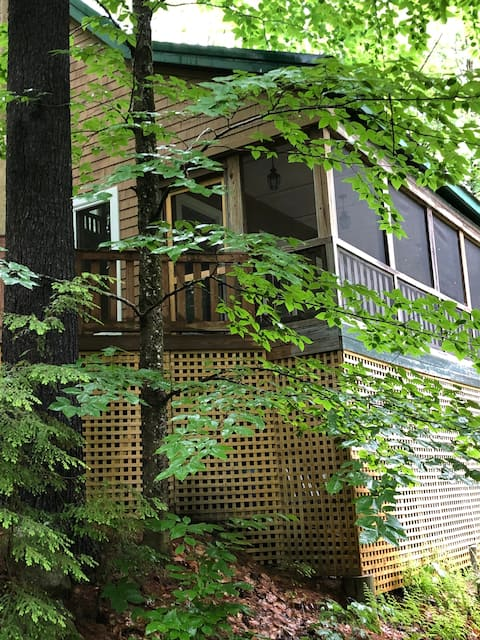 Modern Cabin in Wooded Location & Lake Access