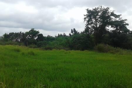 Outland Homestay