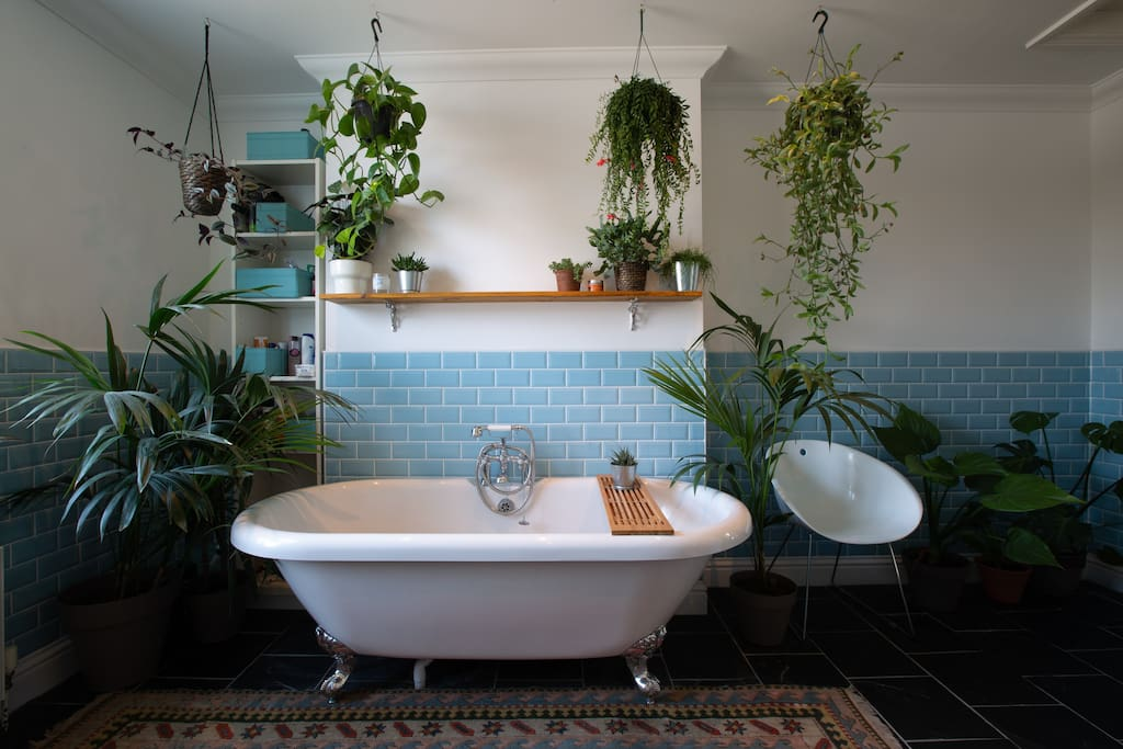 The best bath you will probably ever had... Surrounded by a small forest of plants this large roll-top bath offers the perfect antidote to walks around the galleries and harbour...
