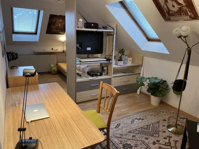 Cozy room in shared flat