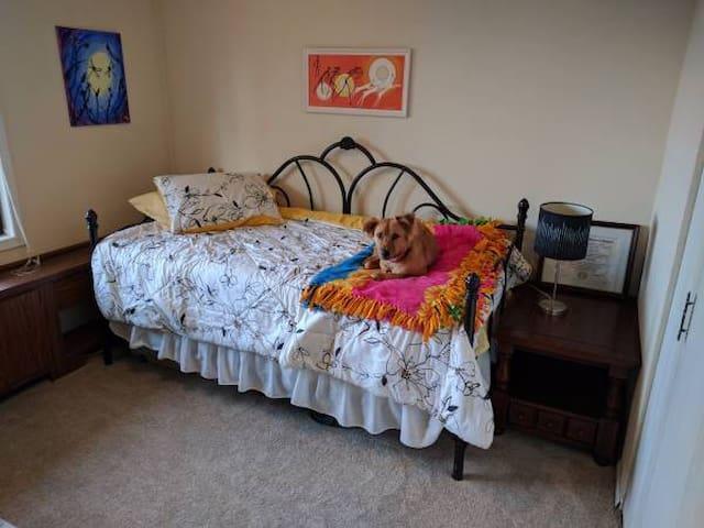 Quiet Bedroom with Furry Friend