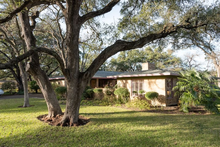 Mid-Century Modern Amid Great Oaks