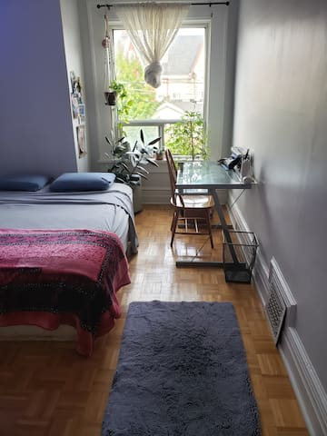 Cozy bohemian bedroom on the bloor line downtown Toronto. 420 friendly, all walks of life!