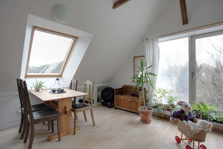 beautiful farm apartment - Odder - Departamento