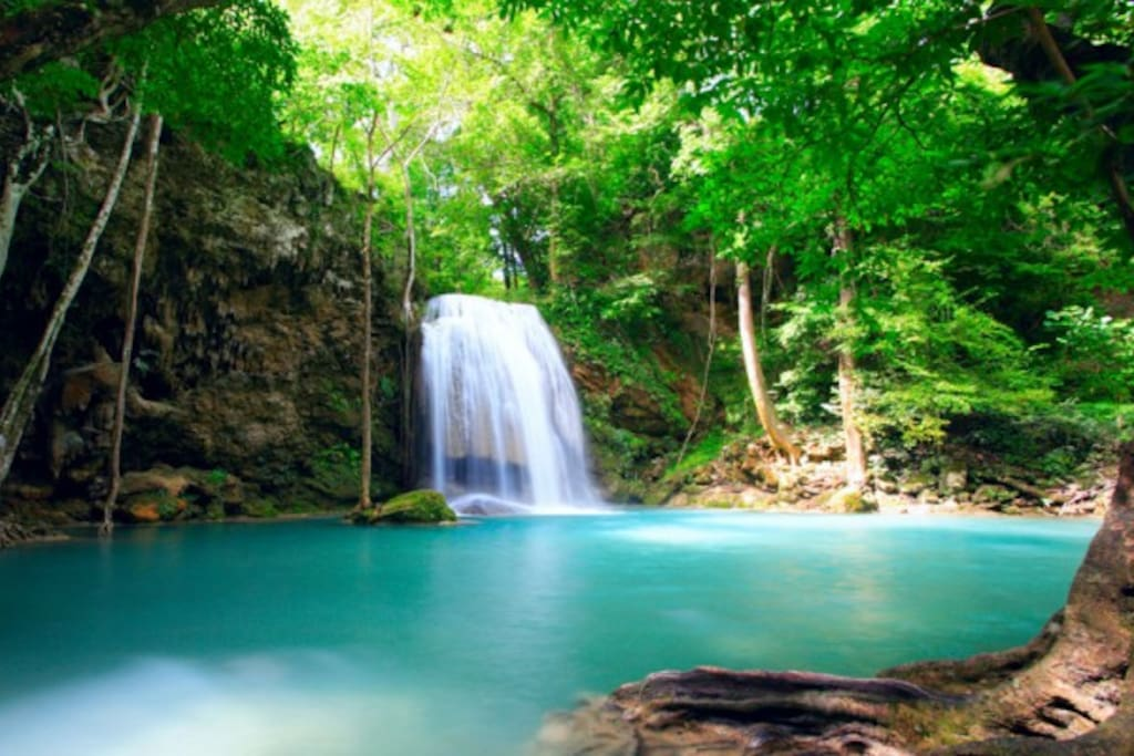 Enjoy our many waterfalls we have 5 of them to go to.