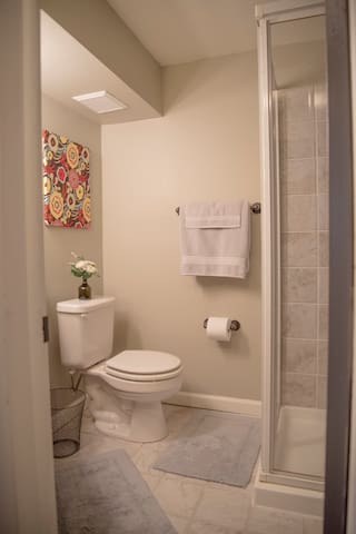 Bathroom with shower in basement.