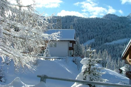 A small hotel in the Dolomites - Selva di Cadore - B&B