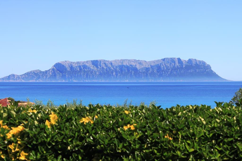 Views on Tavolara Island from the garden