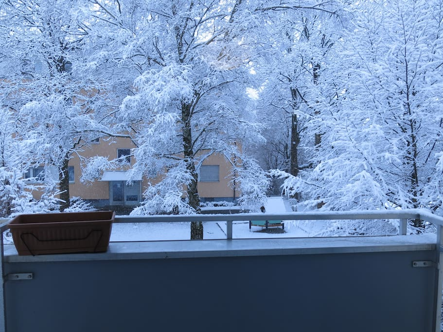 View from the window of the room on a snowy winter morning
