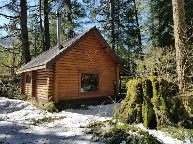 Skykomish Little Bear Log Cabin