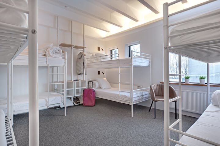 Bed in 8 Beds Mixed Dormitory, Laekur Hostel