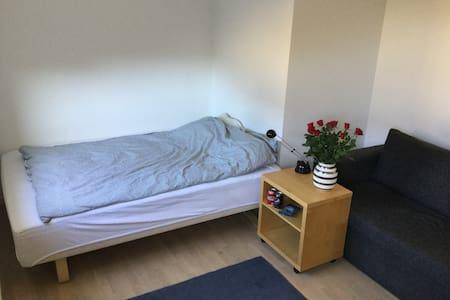 Stort lyst værelse , eget badeværelse og dobb seng