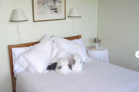 Stunning Seaviews, Luxurious Acc. - Karikari Peninsula - Bed & Breakfast