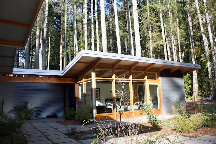 Modern studio in the woods, Denman Island - Denman Island