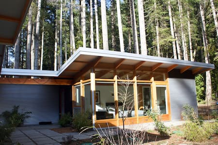 Modern studio in the woods, Denman Island - Denman Island - Guesthouse