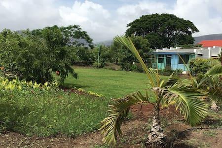 Green Living Farm House
