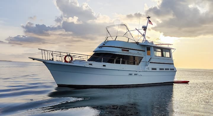 Experience life out on the ocean in a 50 ft yacht