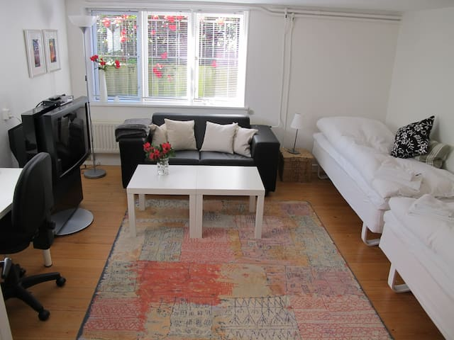 Dejlig lyst værelse i midtbyen - Herning - Huis