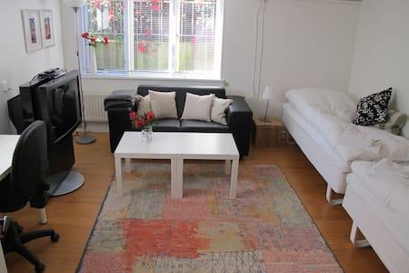 Dejlig lyst værelse m/køkken i midtbyen
