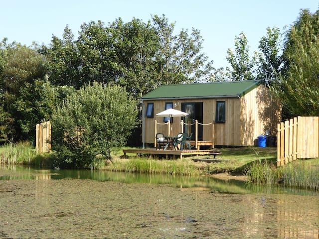 Mallard at Lynstone Lakes