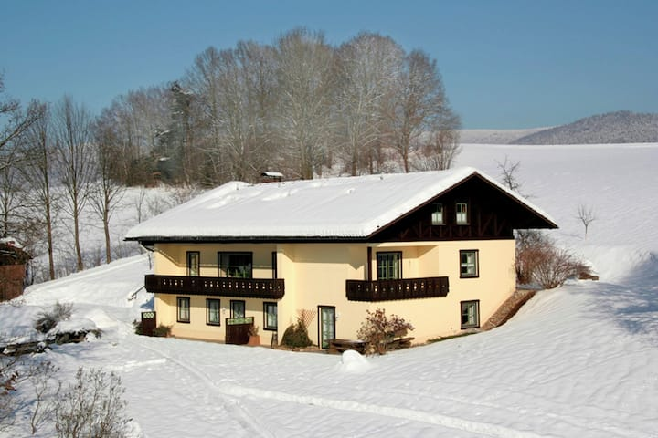 Quaint Apartment in Drachselsried Bavaria with Terrace