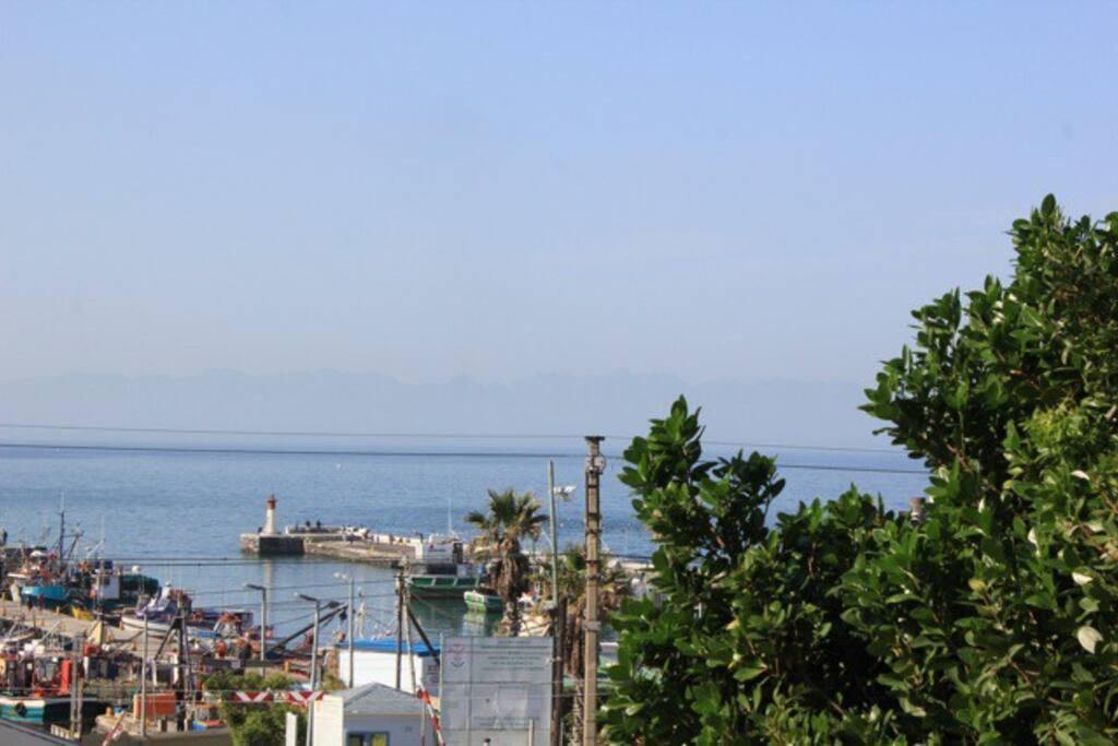 View of Kalk Bay Harbour, 2 min walk