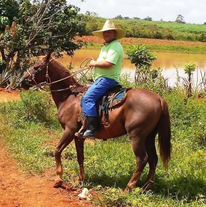 Excursiones a caballos