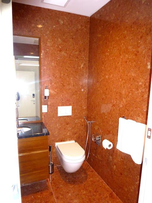 Entrance bathroom