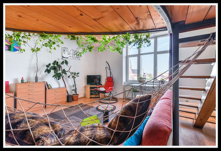 SUPER CENTRAL - HAMMOCK APARTMENT