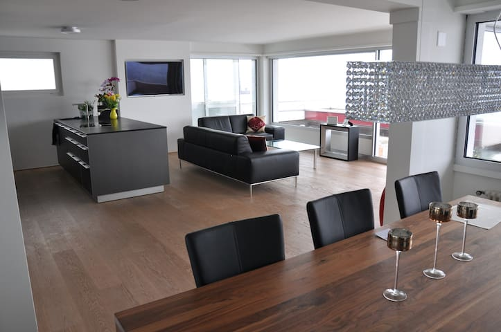 Luxury apartment with an amazing view on the lake - Wollerau - 公寓