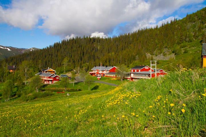 Grønolen Fjellgard www.gronolen.no