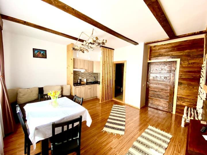 Casa Margau Apuseni Ap 1 with fire place