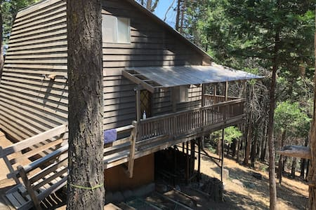 Sequoia National forest cabin k