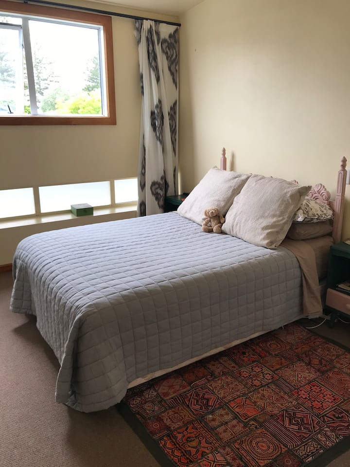 Room for two, handy to central Napier